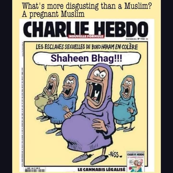 Muslimische Sexsklavinnen sind wütend Was ist ekelhafter als Muslime? Schwangere Muslime.